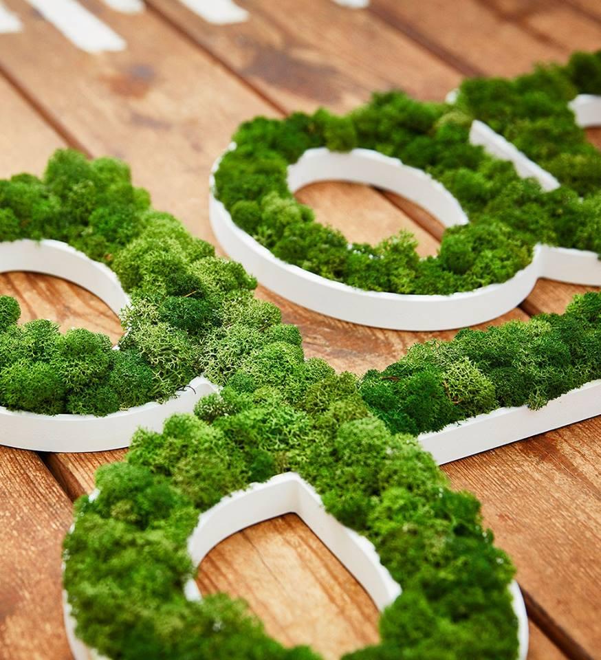 lettrage végétal